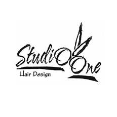 Studio One Hair Design Hudson Valley Connect